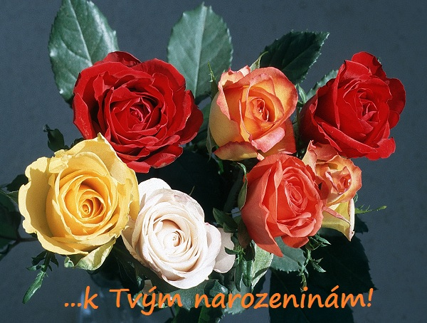 pohlednice k narozeninám Pohlednice k narozeninám   kytice růží pohlednice k narozeninám